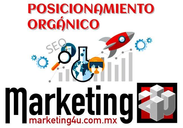 Posicionamiento Orgánico - Agencia de Marketing Digital, México | Marketing 4U